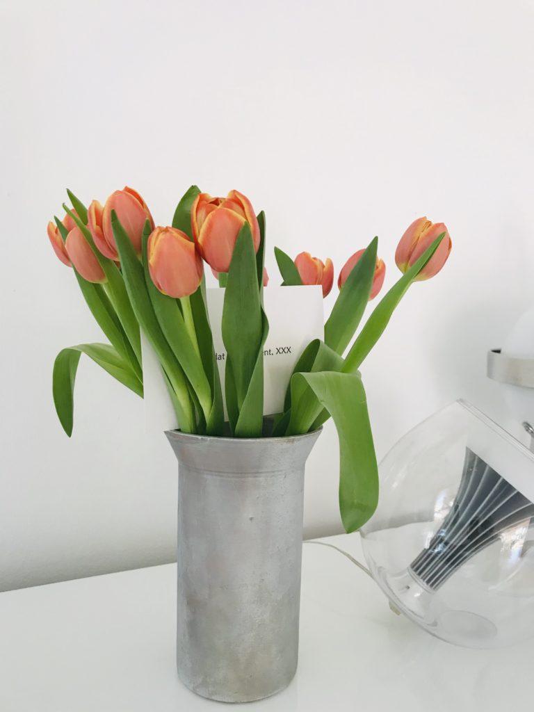 koop tulpen Groei & Bloei via pakketzenden.nl