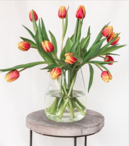 tulpen-pakketzenden.nl-brievenbuscadeau-brievenbuspost-tulpenpost-brievenbusgeschenk-voorjaar-thuiswerken