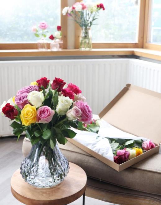 rozen-per-post-mooie-kleurenmix-pakketzenden.nl-brievenbuscadeau-brievenbusgeschenk-brievenbuspost