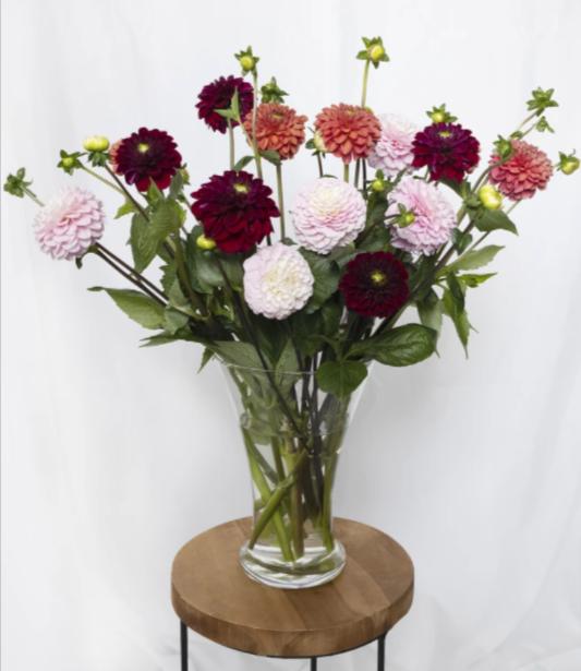 Dahlia-mix-herfstboeket-pakketzenden.nl-bloemen-per-post-bloemenkoerier-collega's-verrassen-thuiswerken-bloemen